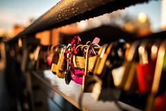 Lover's Bridge (nic_r) Tags: lovers bridge loversbridge birmingham birminghamuk locks loverslocks lockbridge padlock padlocks metal mailbox shallowdepthoffield f18 35mm nikon d500