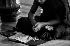 Novice monk studying the teachings of Buddha in Shwe Yan Pyay monastery - Nyaungshwe, Myanmar (Phil Marion) Tags: myanmar burmese mon asian oriental buddhist philmarion candid woman girl boy teen 裸 schlampe 나체상 벌거 desnudo chubby nackt nu ヌード nudo khỏa 性感的 malibog セクシー 婚禮 hijab nijab burqa telanjang nude slim plump tranny sex slut nipples ass xxx boobs tits upskirt naked sexy bondage fuck tattoo fetish erotic lingerie cameltoe feet cock desi hindu japanese african khoathân latina khỏathân beach public swinger toy outdoor cosplay gay wife dick
