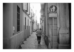 (floguill) Tags: seville leica mp summilux 35mm preasph kentmere 100 ilfosol