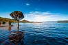 Lake Pedder (medXtreme) Tags: australia australien australienkontinent baum bewölkt binnengewässer clouds cloudy commonwealthofaustralia gewässer inlandwater lakepedder lakes lutriwita overcast seen stretchofwater tasmania tasmanien tassie tree vandiemensland wasser wolken