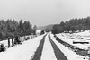 hotza (aingerubidaurreta) Tags: gorbea snow cold road winter forest beautiful basquecountry bizkaia euskalherria euskadi europe paisaje paysbasque paradise mountain mendi