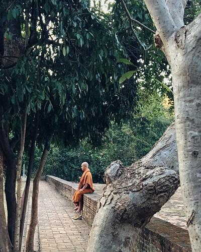 Wat Umong, Chiang Mai.