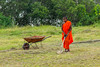 J1. Jeune moine (Darth Jipsu) Tags: religion robe colorfull buddhism srilanka monk orange bhikshu