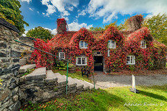 Llanrwst Tea Room (Adrian Evans Photography) Tags: ivy autumn snowdonia window bench 15thcentury windows fall door wales teashop uk northwales architecture pontfawr stone path cottage llanrwst landmark outdoor entrance clouds vintage tree conwyvalley conwy victorian arch open adrianevans tuhwntirbont building steps sky sign seat riverbank courthouse 14mm nikon