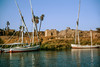 Feluccas, Aswan (bruno vanbesien) Tags: aswan egypt misr boat river أسوان eg
