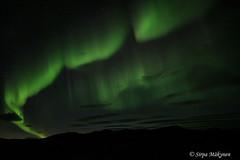 Gjesvær tulet 14 (sirpamak) Tags: gjesvær norway norja revontulet northernlights nordlys nordkapp syksy autumn auroraborealis aurora