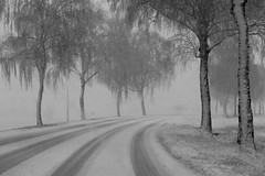 L'hiver revient.... (Sœurette 67) Tags: winterbeauty