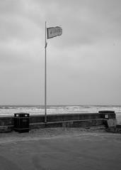 Bridlington - Frayed flag (Tony McLean) Tags: ©2018tonymclean bridlington blackwhite monochrome yorkshirecoast leicamonochrom leica35summiluxfle