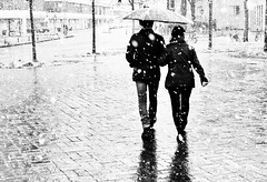 With you it's less cold (Leonegraph) Tags: küchengarten couple umbrella snow panasonicgx80 panasonic1235mmf28 mft micro43 microfourthirds hannover hanover monochrome einfarbig bw sw blanco negro bn schwarz weis black white leonegraph streetphotographer public öffentlich leben lebendig story urban photography spontan spontanious candid unaware unposed personen sitaution street 2017 europe europa germany deutschland drausen gehen