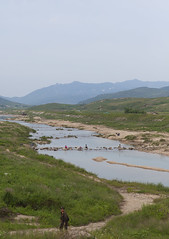 North Korean people washing clothes in a river, North Hwanghae Province, Kaesong, North Korea (Eric Lafforgue) Tags: agriculture army asia communism copyspace countryside day dictatorship domesticlife dprk field gaeseong grass img5624 incidentalpeople nature northhwanghaeprovince northkorea outdoors plant poverty river ruralscene solider vertical washing water kaesong 北朝鮮 북한 朝鮮民主主義人民共和国 조선 coreadelnorte coréedunord coréiadonorte coreiadonorte 조선민주주의인민공화국 เกาหลีเหนือ קוריאההצפונית koreapółnocna koreautara kuzeykore nordkorea північнакорея севернакореја севернакорея severníkorea βόρειακορέα