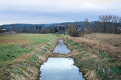Reality (Alexandra Horvath) Tags: nature outdoor hungary nikon nikond3200 winter landscape brook water field yongnuo