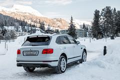 -20 degrees Spot (Nico K. Photography) Tags: bentley bentayga suv luxury supercars snow white nicokphotography switzerland stmoritz