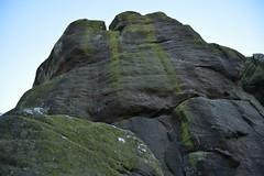 Brimham Rocks (150) (rs1979) Tags: brimhamrocks summerbridge nidderdale northyorkshire yorkshire loversleap