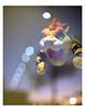 Angry bowser (Peter Bruijn) Tags: double exposure doubleexposure analog analogue analogphotography analogfilm analogphoto 35mmanalog kodak kodakfilm kodakcolor kodakcolor200 nikon nikni nikonfe2 nikonanalog nikonfilm nikonfe color color200 200asa film filmisnotdead filmphotography filmphoto 135film 35mm 35mmphotography 35mmphoto 35mmfilm 135 bowser mario nintendo switch angry kodakanalog kodak35mm shootfilm
