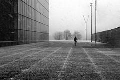 Ice time (pascalcolin1) Tags: paris13 bnf femme woman ice glace neige snow photoderue streetview urbanarte noiretblanc blackandwhite photopascalcolin 50mm canon50mm canon