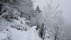 18022018-IMG_1642 (Steffan Photos) Tags: randonnée raquettes neige alsace vosges haut rhin rouge gazon gresson ferme auberge saintmauricesurmoselle grandest france fr