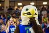 MBB_vs_Lipscomb_015 (FGCU   University Marketing & Communications) Tags: fgcu photocreditjamesjgreco ©floridagulfcoastuniversity athletics basketball alicoarena dunkcity cheer azul mascot cheerleaders cheerleading atlanticsun