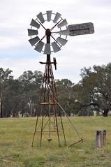 8-foot Intercolonial Boring Company (IBC) Geared Simplex; NSW, Australia (sarracenia.flava) Tags: ibc geared simplex windmill moffat nsw intercolonial boring company virtue