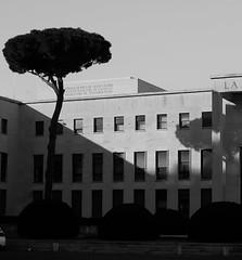 Architectural (MarcelloCeraulo | Portfolio) Tags: roma rome lazio italia italy fujifilm architettura architecture architectural monochrome blackandwhite black shadows building lighting fotografia