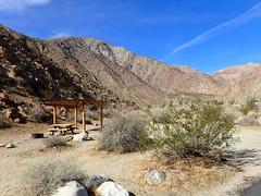 P1270557 (Dr. Fieldgood) Tags: anza borrego california camping amber larry amy desert