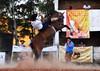 Simões e Galleta da Cincerro (Eduardo Amorim) Tags: gaúcho gaúchos gaucho gauchos cavalos caballos horses chevaux cavalli pferde caballo horse cheval cavallo pferd pampa campanha fronteira quaraí riograndedosul brésil brasil sudamérica südamerika suramérica américadosul southamerica amériquedusud americameridionale américadelsur americadelsud cavalo 馬 حصان 马 лошадь ঘোড়া 말 סוס ม้า häst hest hevonen άλογο brazil eduardoamorim gineteada jineteada