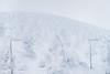 藏王. (bgfotologue) Tags: ロープウェイ landscape winter zao 風光 零下 戶外 溫泉 subzero a72 zero 2017 tree sony 蔵王温泉 outdoor bgphoto 風景 攝影 frozen 連峰 雪 樹氷 photo ropeway 風景500px imaging photography 冬 吊車 冰 日本 山形 滑雪 藏王 ski 自然 onsen jizoson bellphoto snow 樹怪 yamagata image tumblr 500px 樹冰 温泉 snowmonster 冰雪 蔵王 ice