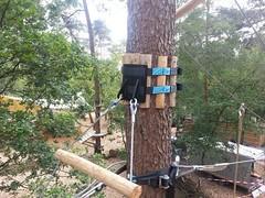 #Treefriendly #ecofriendly #anchoring system now available for tree construction professionals http://j.mp/2iHlF3B (Skywalker Adventure Builders) Tags: high ropes course zipline zipwire construction design klimpark klimbos hochseilgarten waldseilpark skywalker