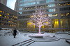 Tree of Light (cookedphotos) Tags: 2018inpictures toronto ontario canada canon 5dmarkiv streetphotography commercecourt tree light decoration snow winter man walking business work alone cold 365project p3652018 financialdistrict
