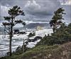 Cannon Beach, Oregon / From Hwy101 View Point December 2017 (PNWIslandguy) Tags: magicuniverse artmix westcoast hwy101 oregoncoast northwestcoast pacificbeaches cannonbeach oregon