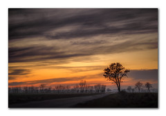 Schleswig-Holsteinische Landschaft (fotobagaluten.de) Tags: landscape landschaft himmel sky rural germany deutschland winter sunset sonnenuntergang baum tree field feld night nacht