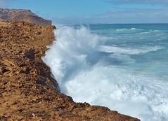 waves on Eyre Peninsula (sarinozi) Tags: australia australian outdoor nature natural coast shore spray seaspray barren cliff rugged rough wave windswept