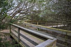 Basin Boardwalk