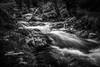 Stream in Glen Coe (Evo800) Tags: scotland scottish glen coe stream water rocks moss slow shutter detail nikon waterfall rock river