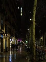 When I arrived in Barcelona it was raining…. (stillunusual) Tags: barcelona catalunya catalonia spain bcn hotel barceló raval barcelo street streetphotography urban urbanscenery urbanlandscape cityscape evening night dark travel travelphotography travelphoto travelphotograph 2018