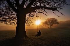 A silent swing in the sunrise (PeterSundberg66 former PeterSundberg65) Tags: swing sunset sunrise sun buddha buddism nature man grass happening watch helpfull england countryside tree sky park mist lake landscape ngc abigfave