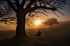 A silent swing in the sunrise (PeterSundberg66 former PeterSundberg65) Tags: swing sunset sunrise sun buddha buddism nature man grass happening watch helpfull england countryside tree sky park mist lake landscape ngc