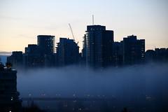 Vancouver Fog (Wally Barber) Tags: vancouver fog falsecreek cities dusk