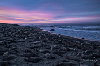 Piedras Blancas at dawn (Explored)