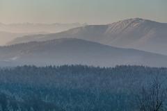 Winter Beauty (Kajfash) Tags: canoneos5dmarkii canonef70300mmf456lisusm kudłacze beskid tatry tatramountains winter zima nature natura krajobraz landscape morning poranek poland polska