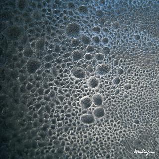 Rare frost pattern - Motif de gel rare