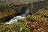 revisited (donnnnnny) Tags: scotland bridge stone colourcontrast autumn burn river creek natural nature
