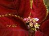 Mayana (A. K. Hombre) Tags: mayana plectranthusscutellarioides leaves plant flora flowers flores fleur macro blooms blossoms