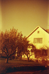 In a Land of Valleys (Magnus Bergström) Tags: lomography redscale xr lomographyredscalexr film 135 35mm luminox luminox356sl analog lomo sweden sverige dalsland åmål åmåls kommun tree house garden sky window villa