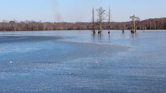 Frozen Lake Conway 001 (Val Hightower) Tags: frozen lakeconway conway mayflowerarkansas mayflower arkansas