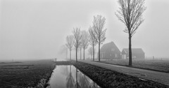 The Wide Small World (Alfred Grupstra) Tags: blackandwhite nature fog tree landscape ruralscene nopeople winter mist outdoors grass scenics architecture monochrome nonurbanscene autumn sky old overcast builtstructure