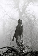 "Cincinnati – Spring Grove Cemetery & Arboretum ""Foggy Morning At Trumpeter Statue"" (David Paul Ohmer) Tags: ohio cincinnati spring grove cemetery arboretum springgrovecemetery gravesites burial grounds death spirit soul deceased graveyard conservatory victorian gothic revival national historic landmark adolph strauch cemetary trumpeter statue fog"