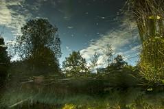 Surreal Pond Dream (Dan Daniels) Tags: audand nikon water reflections ponds riehenbsch basel switzerland trees dreamphoto dreamscape dreams skies surreal surrealism
