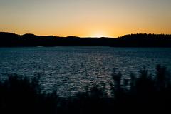 Sunset #129,912,827 (Robert Anders) Tags: 2017 ccby canonef85mmf12liiusm canoneos6d creativecommons eos6d lake scandinavia schweden see skandinavien sonnenuntergang sunset sweden wasser water urlaub2017 lennartsfors värmlandslän swe