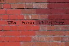 20:365:2018 (chrisjtse) Tags: 365 2018 wellington newtown text brick graffiti