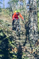 2018.02.25. Borsberg MTB-10 (Michael_Topp) Tags: fahrrad mountainbike himmel licht dresden sony nex